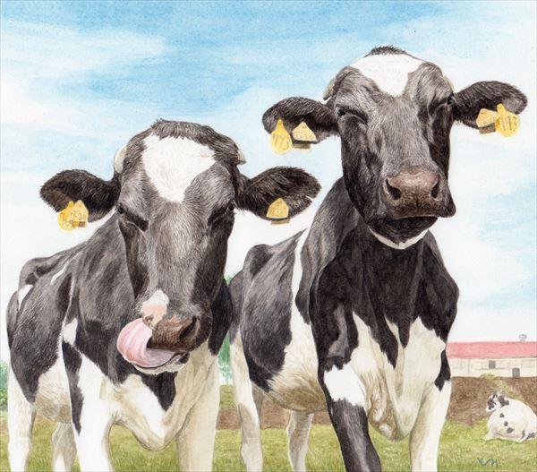 mihotomita-仲良し若牛
