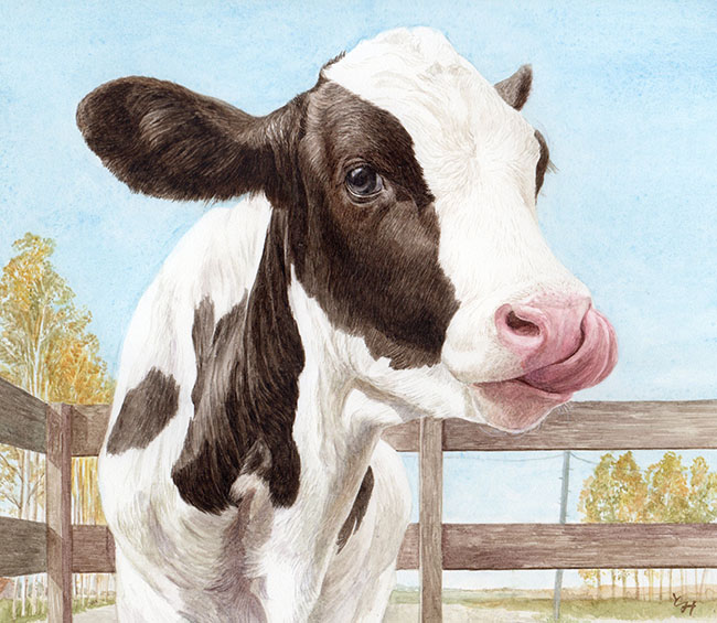 mihotomita-子牛と秋